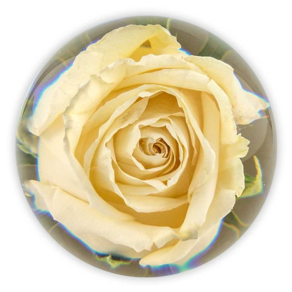 "3.5"" Single Funeral Flower Paperweight"