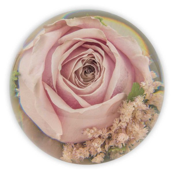 Anniversary Single Flower Paperweight