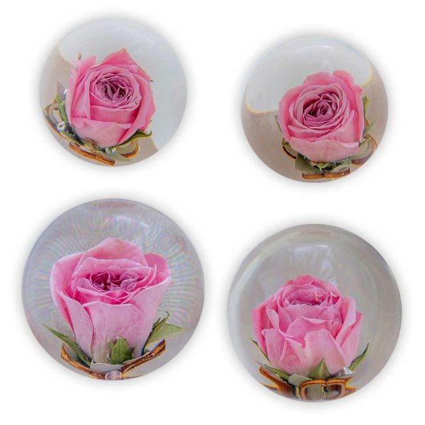 Somerton Delux Flower Paperweight